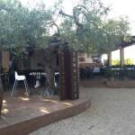 RESTAURANT BONA TECA. Platja de Santa Llúcia. Tel. 639566884